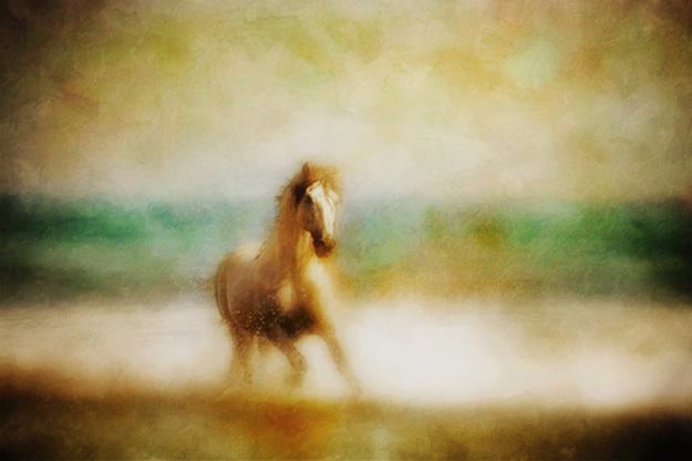 horse_splashing_through_the_ocean_waves3